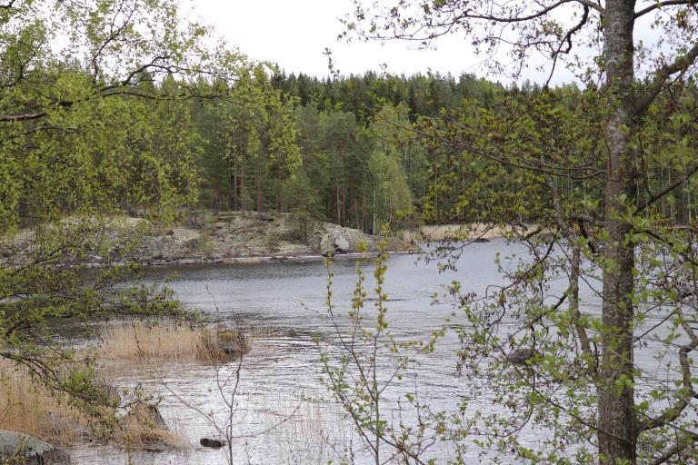 20170602 Sysymä-Jyväskylä 020