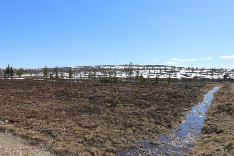 20170609 Finn-Lappland 034