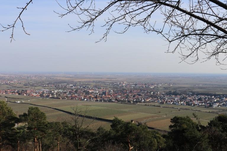 105Deidesheim 010